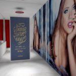 videochat_shower_show